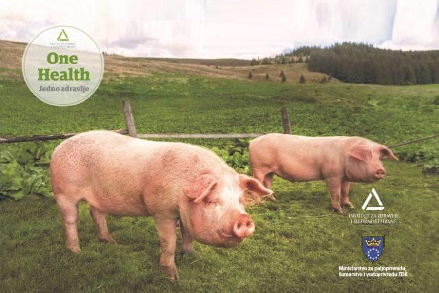 Instrukcija Za Klanje životinja U Domaćinstvu Za Vlastite Potrebe (svinjokolj)
